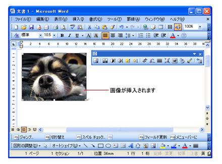word(ワード)写真の挿入